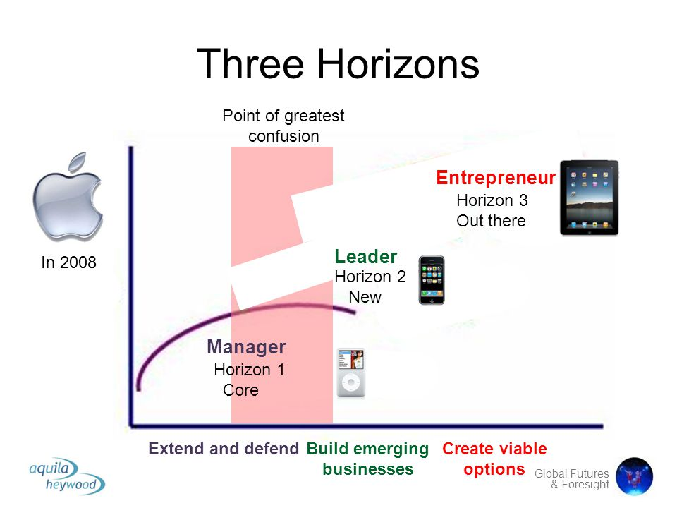 Three Horizons Entrepreneur Leader Manager Point of greatest confusion
