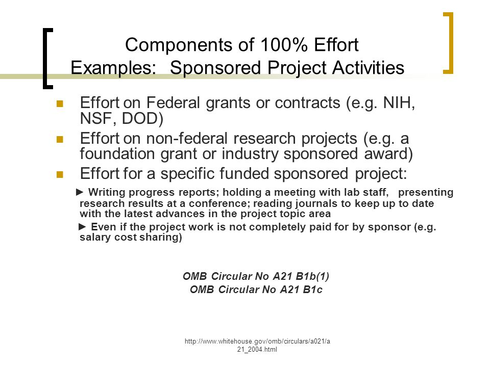 Components of 100% Effort Examples: Sponsored Project Activities