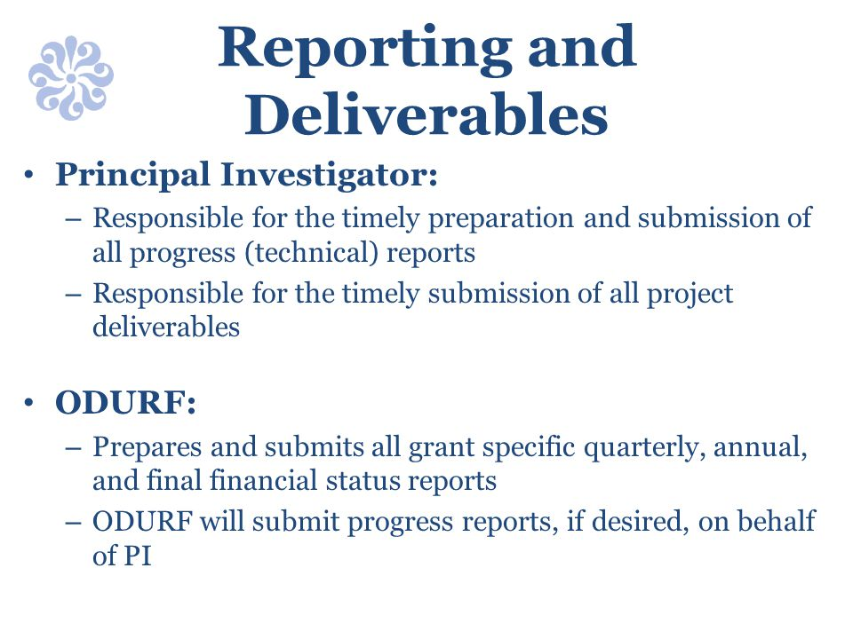 Reporting and Deliverables