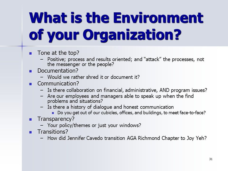 What is the Environment of your Organization