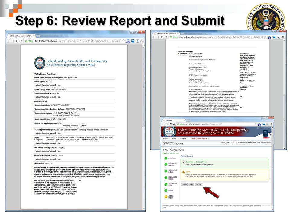 Step 6: Review Report and Submit
