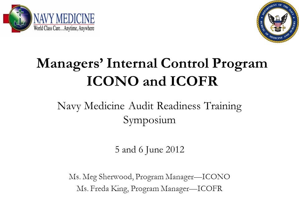 Managers' Internal Control Program ICONO and ICOFR