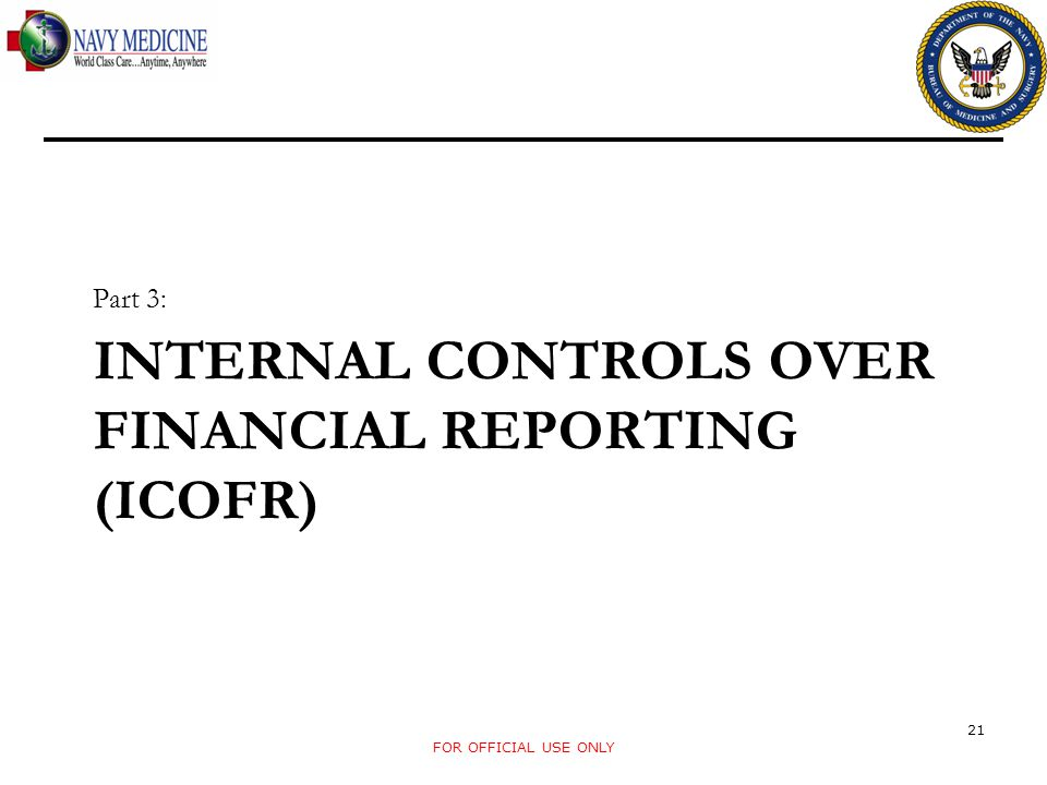 INTERNAL CONTROLS OVER FINANCIAL REPORTING (ICOFR)