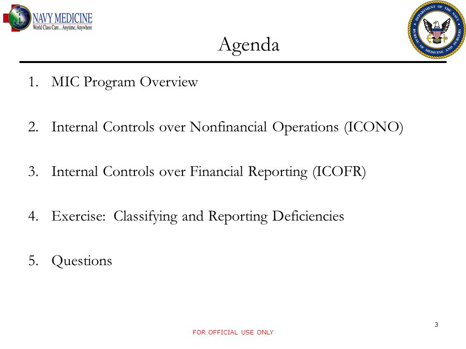Agenda MIC Program Overview