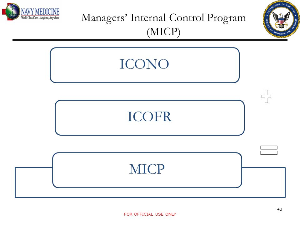 Managers' Internal Control Program (MICP)