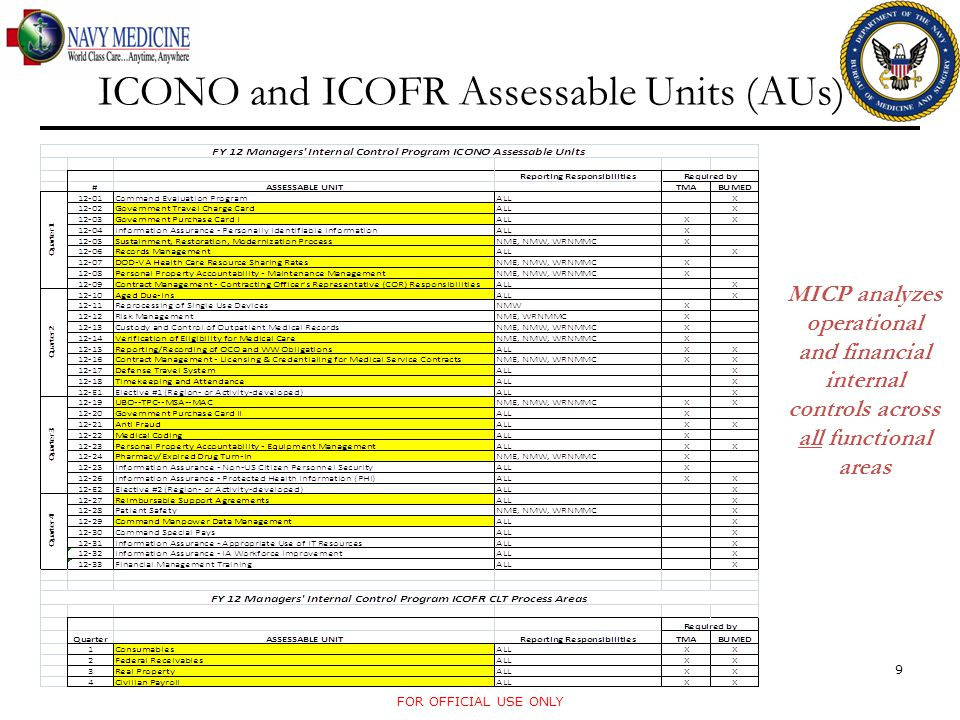 ICONO and ICOFR Assessable Units (AUs)
