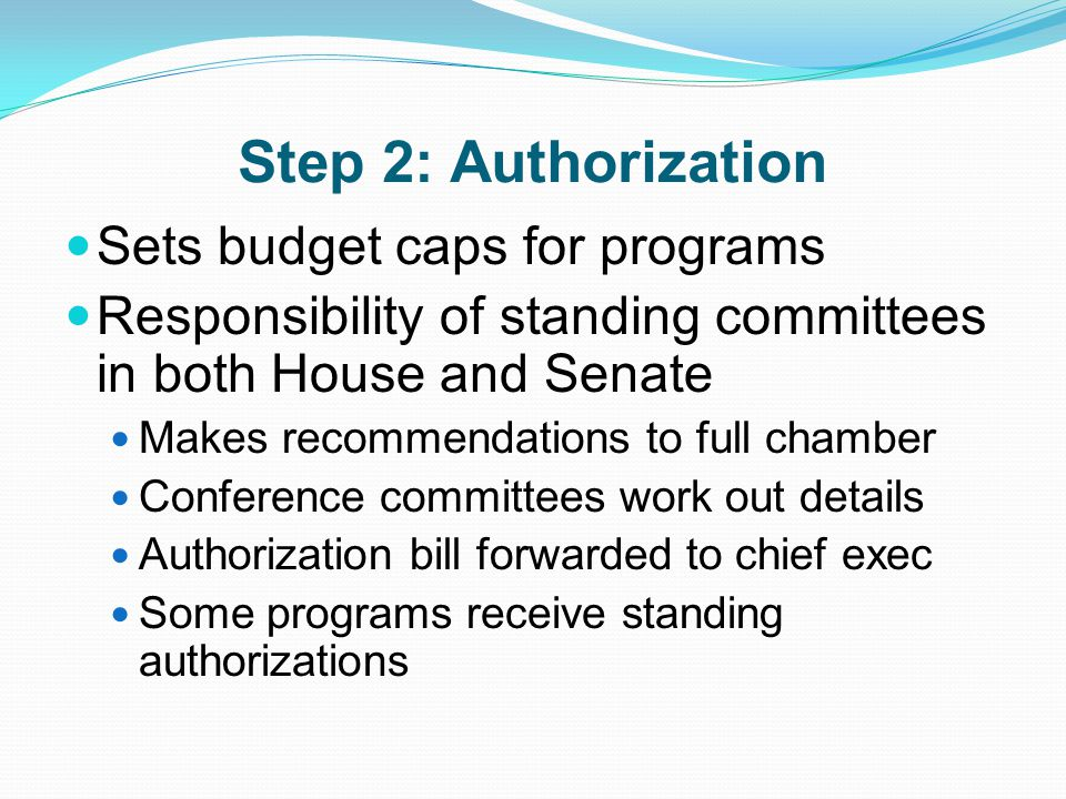 Step 2: Authorization Sets budget caps for programs