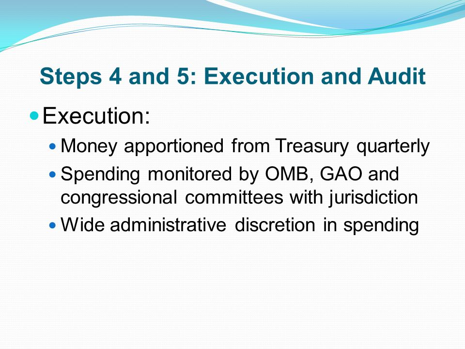 Steps 4 and 5: Execution and Audit