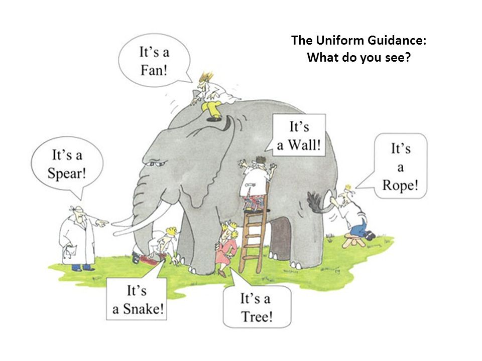 The Uniform Guidance: What do you see