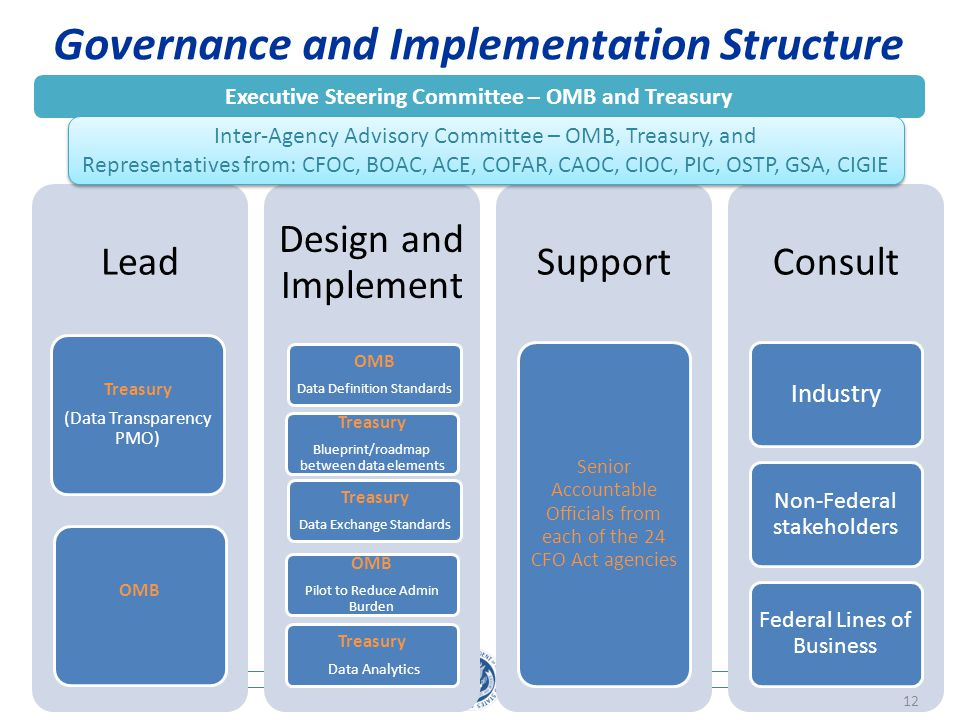 Governance and Implementation Structure