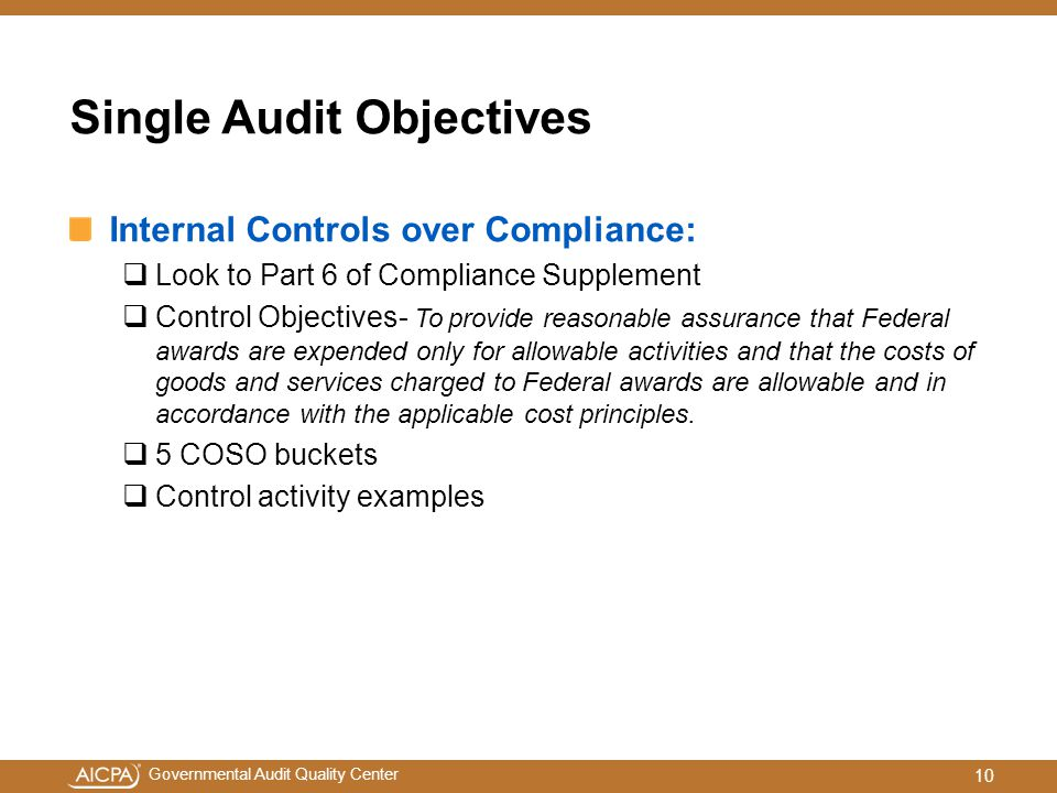 Single Audit Objectives