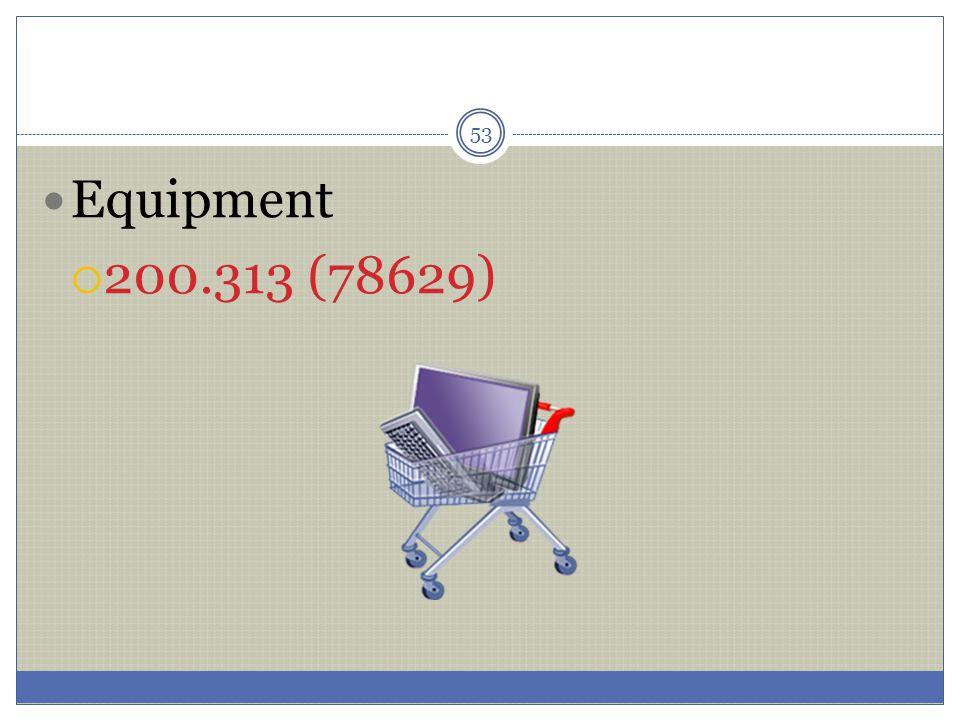 Equipment 200.313 (78629)