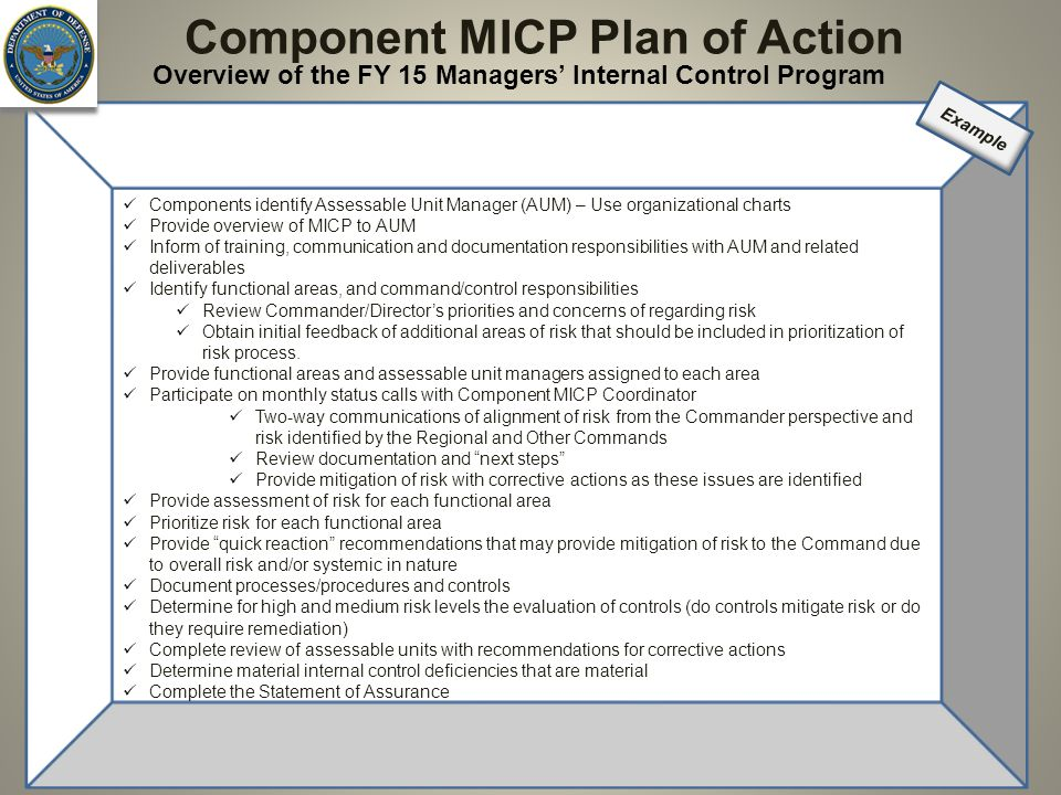 Component MICP Plan of Action