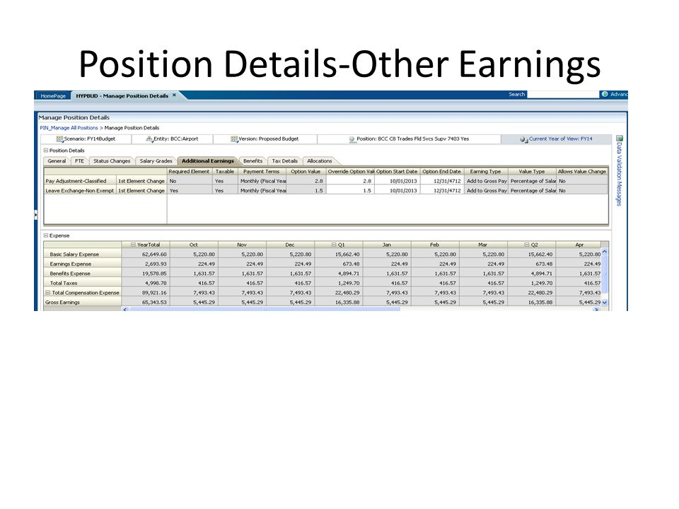Position Details-Other Earnings