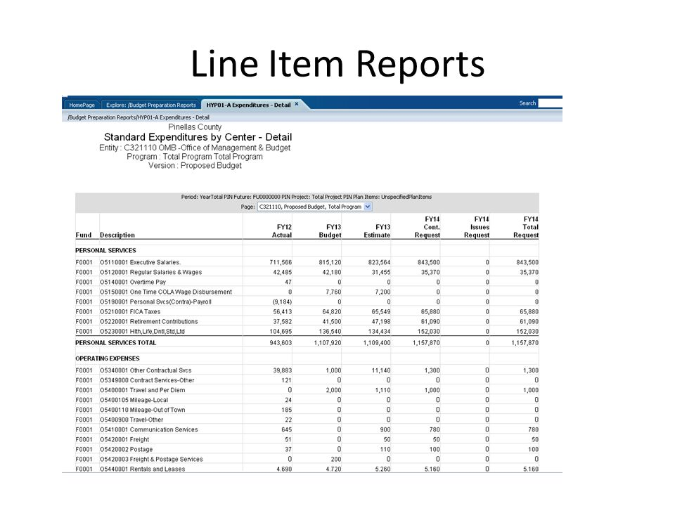 Line Item Reports