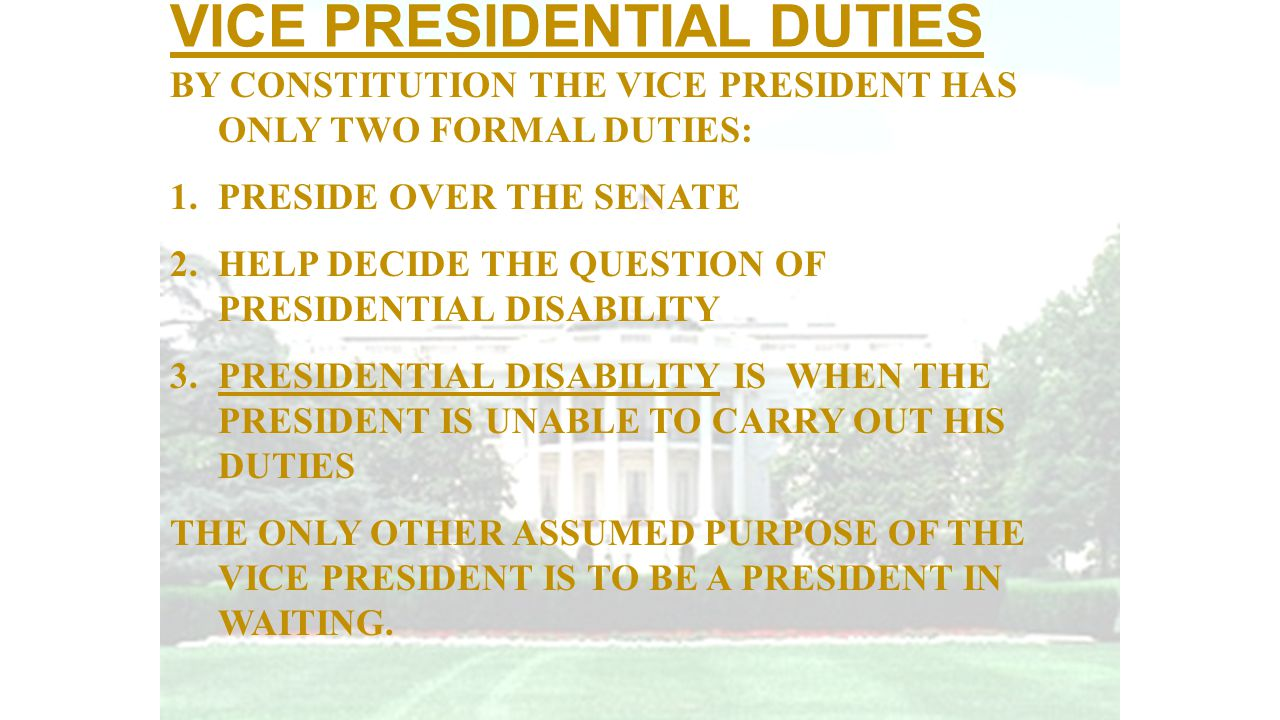 VICE PRESIDENTIAL DUTIES