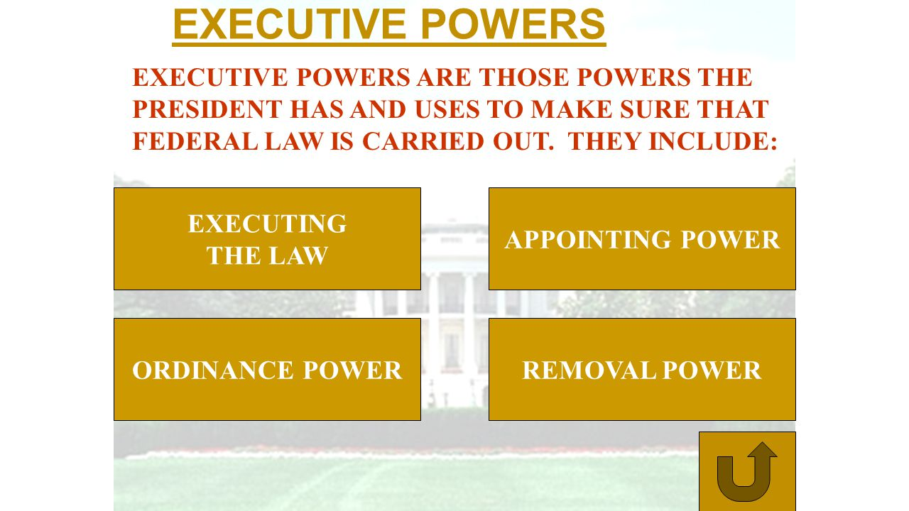 EXECUTIVE POWERS EXECUTIVE POWERS ARE THOSE POWERS THE PRESIDENT HAS AND USES TO MAKE SURE THAT FEDERAL LAW IS CARRIED OUT. THEY INCLUDE: