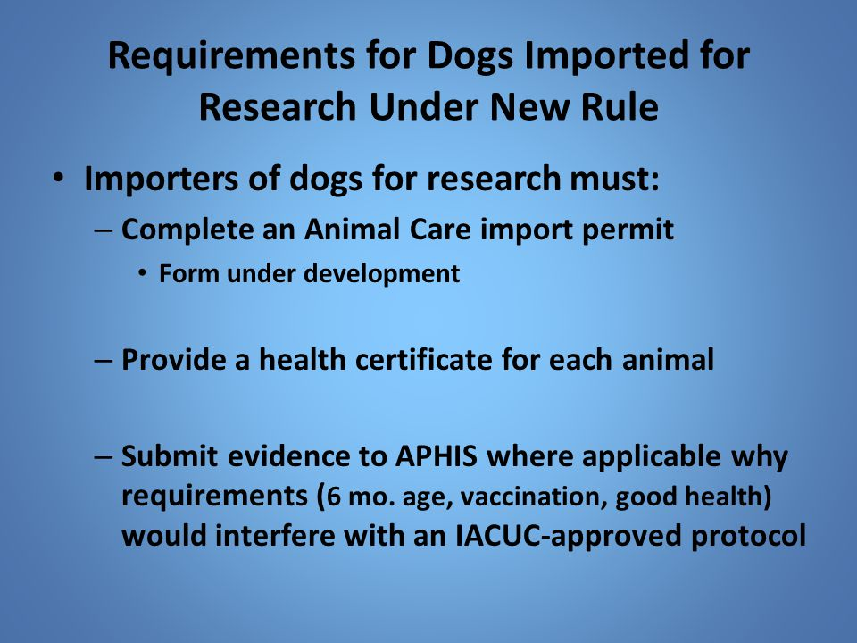 Requirements for Dogs Imported for Research Under New Rule