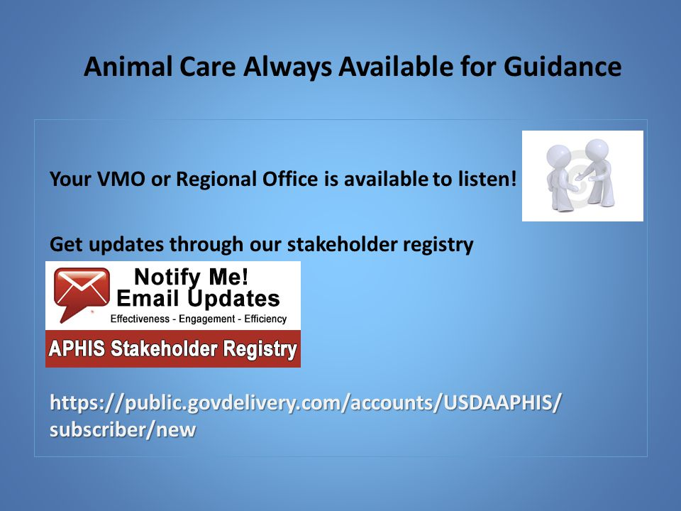 Animal Care Always Available for Guidance