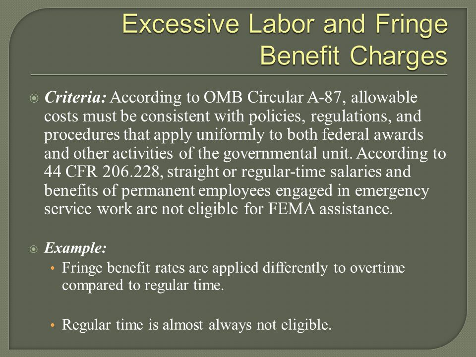 Excessive Labor and Fringe Benefit Charges