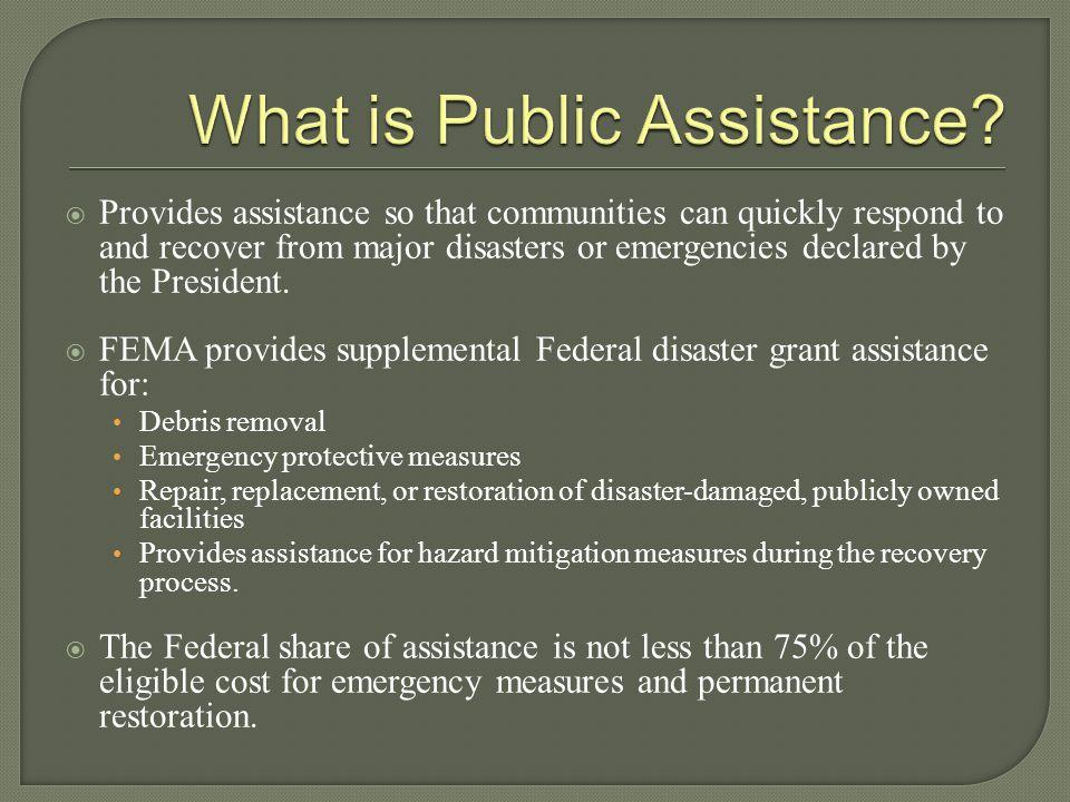 What is Public Assistance