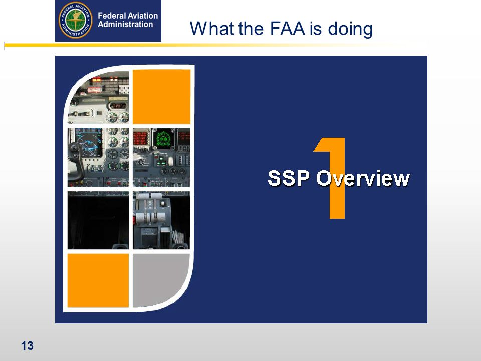 What the FAA is doing