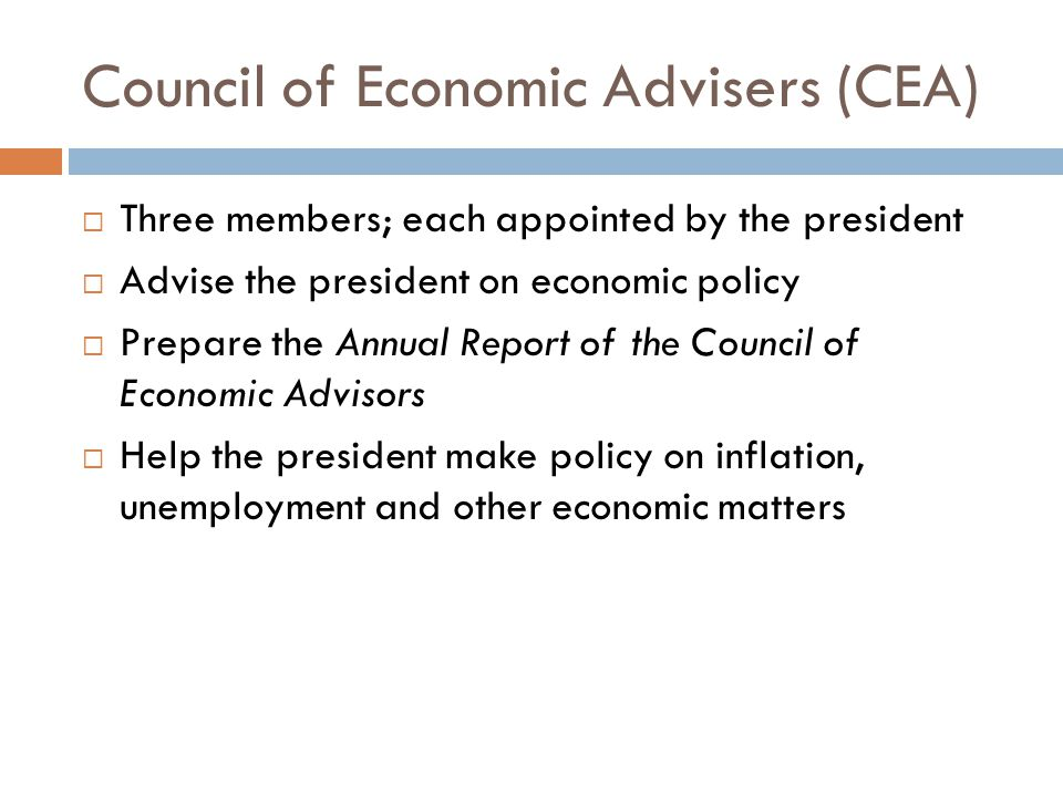 Council of Economic Advisers (CEA)
