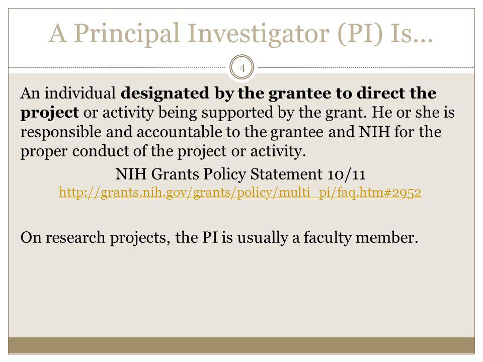 A Principal Investigator (PI) Is…