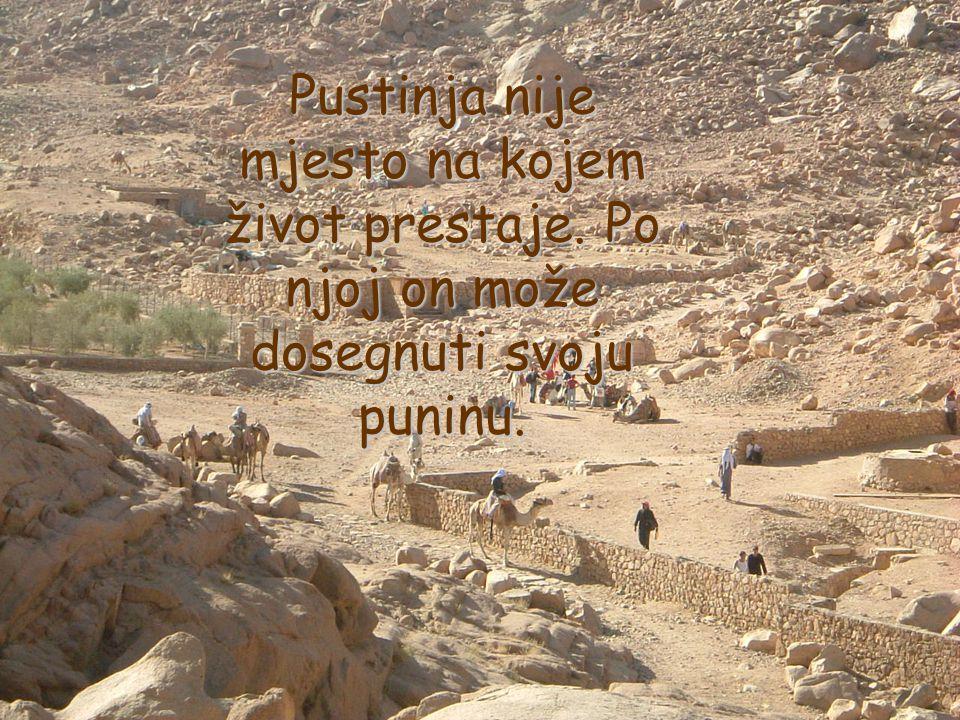 Pustinja nije mjesto na kojem život prestaje