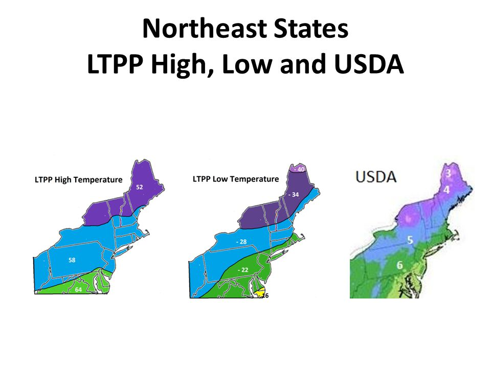 Northeast States LTPP High, Low and USDA