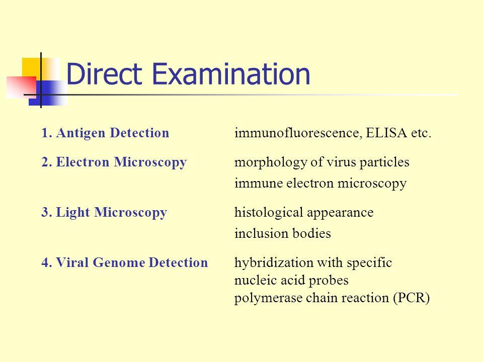 Direct Examination 1. Antigen Detection immunofluorescence, ELISA etc.