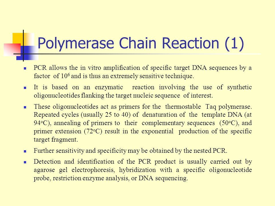 Polymerase Chain Reaction (1)