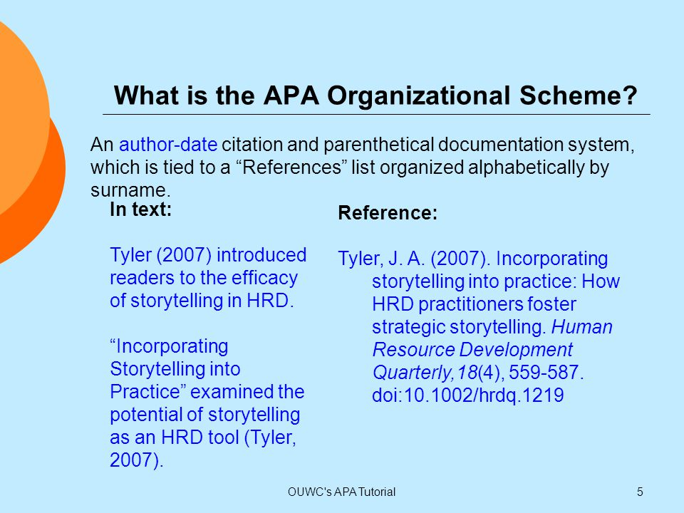 What is the APA Organizational Scheme
