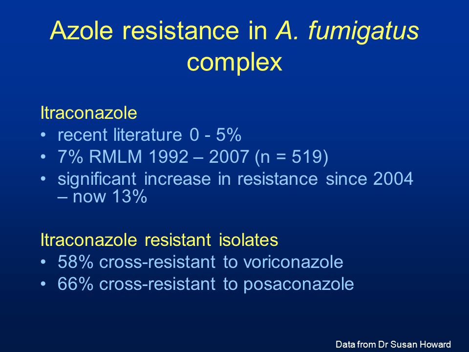 Azole resistance in A. fumigatus complex