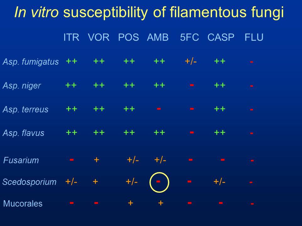In vitro susceptibility of filamentous fungi