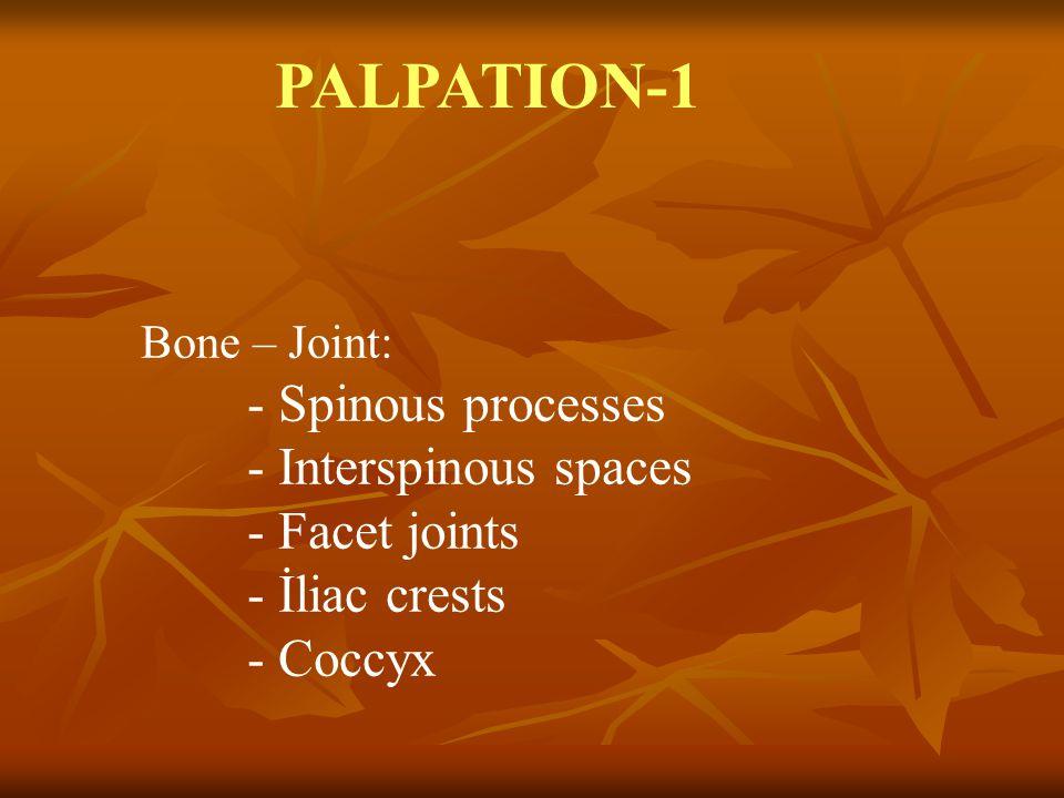PALPATION-1 - Interspinous spaces - Facet joints - İliac crests