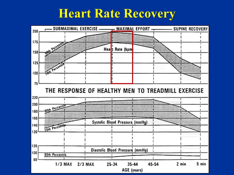 Heart Rate Recovery 28