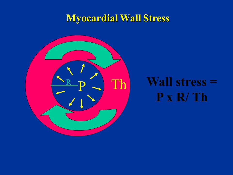 Myocardial Wall Stress
