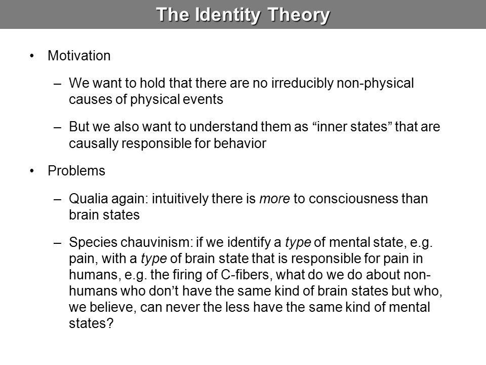 The Identity Theory Motivation