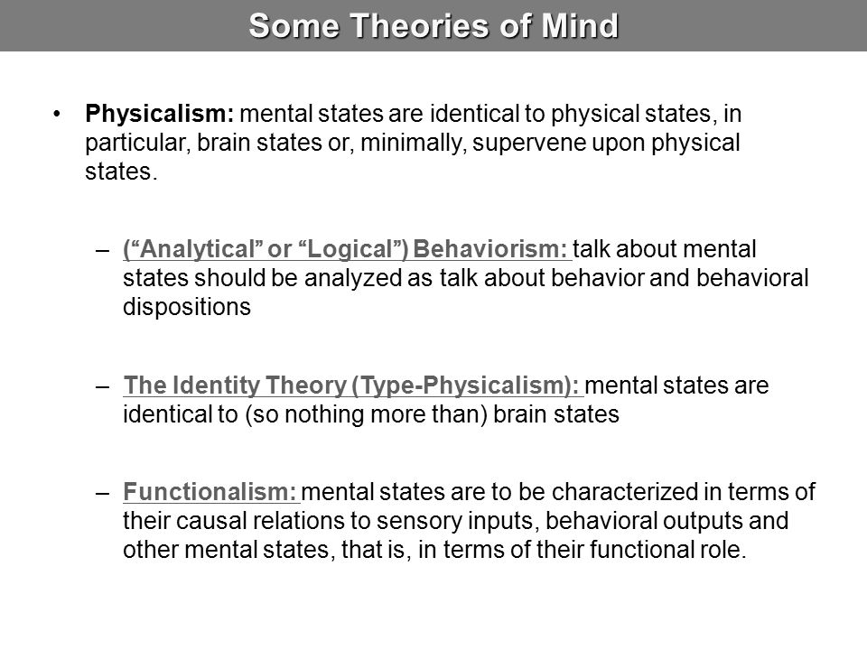 Some Theories of Mind