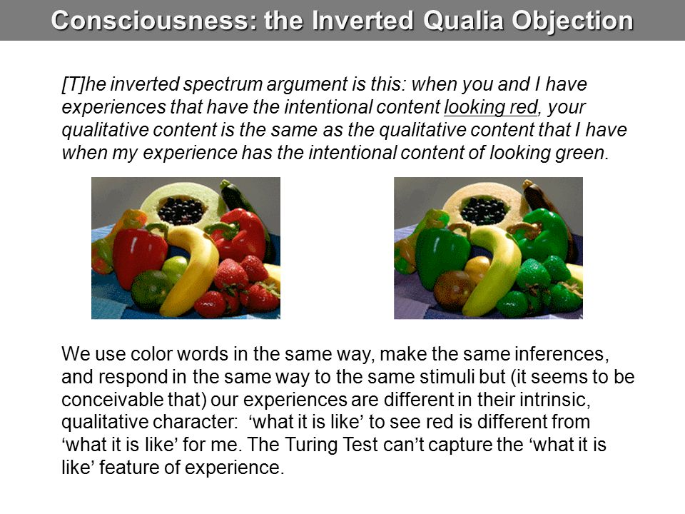 Consciousness: the Inverted Qualia Objection