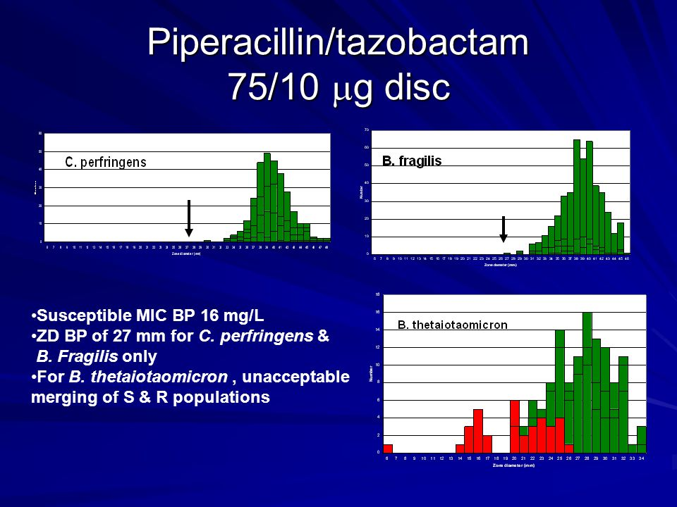 Piperacillin/tazobactam 75/10 g disc