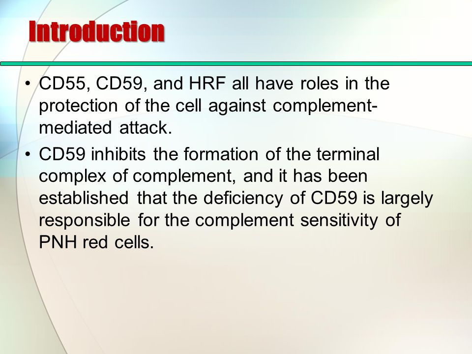 Introduction CD55, CD59, and HRF all have roles in the protection of the cell against complement-mediated attack.