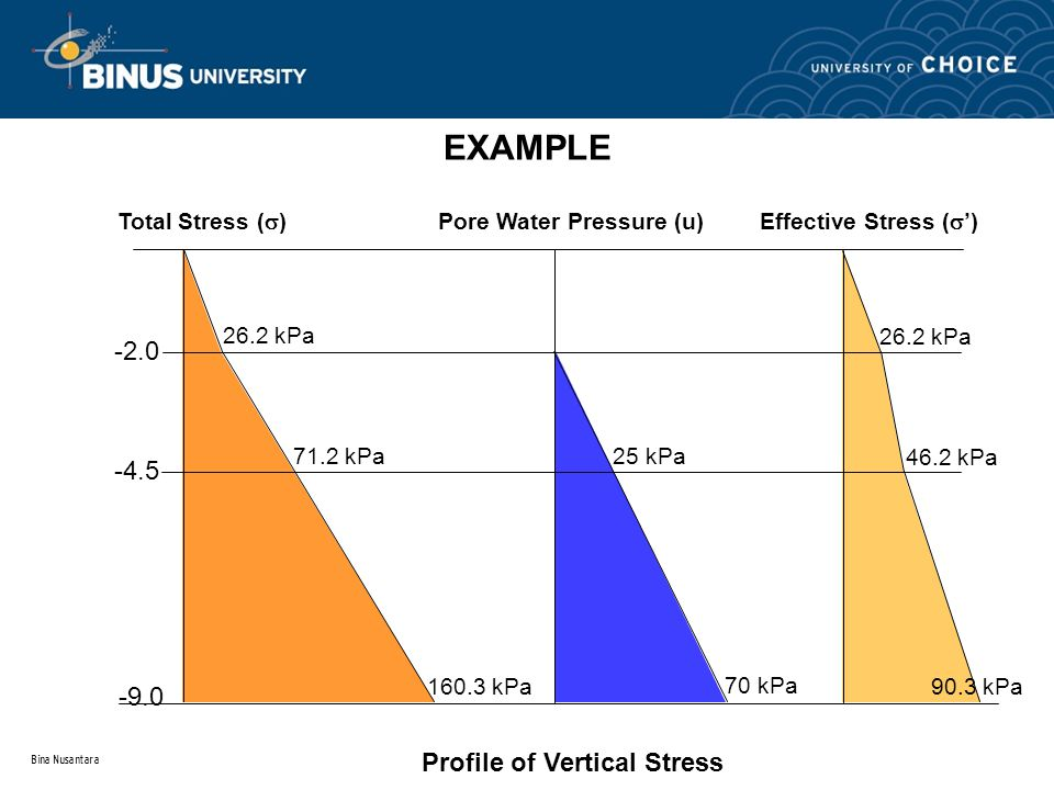 Profile of Vertical Stress
