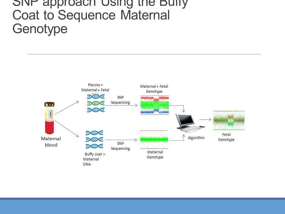 SNP approach Using the Buffy Coat to Sequence Maternal Genotype