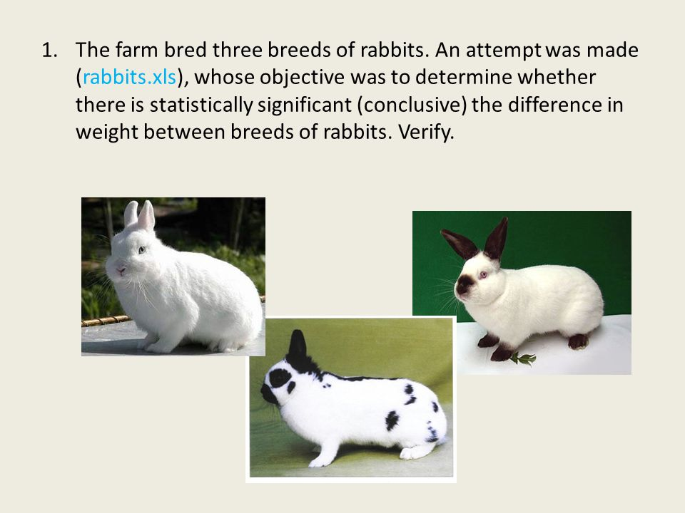 The farm bred three breeds of rabbits. An attempt was made (rabbits