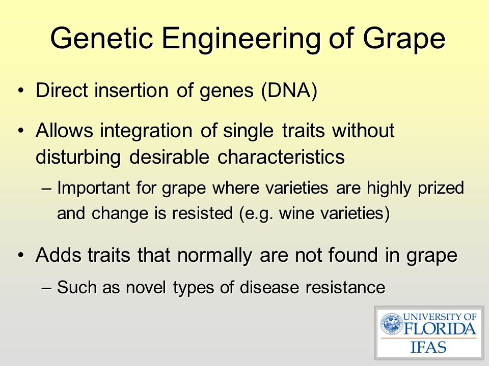 Genetic Engineering of Grape