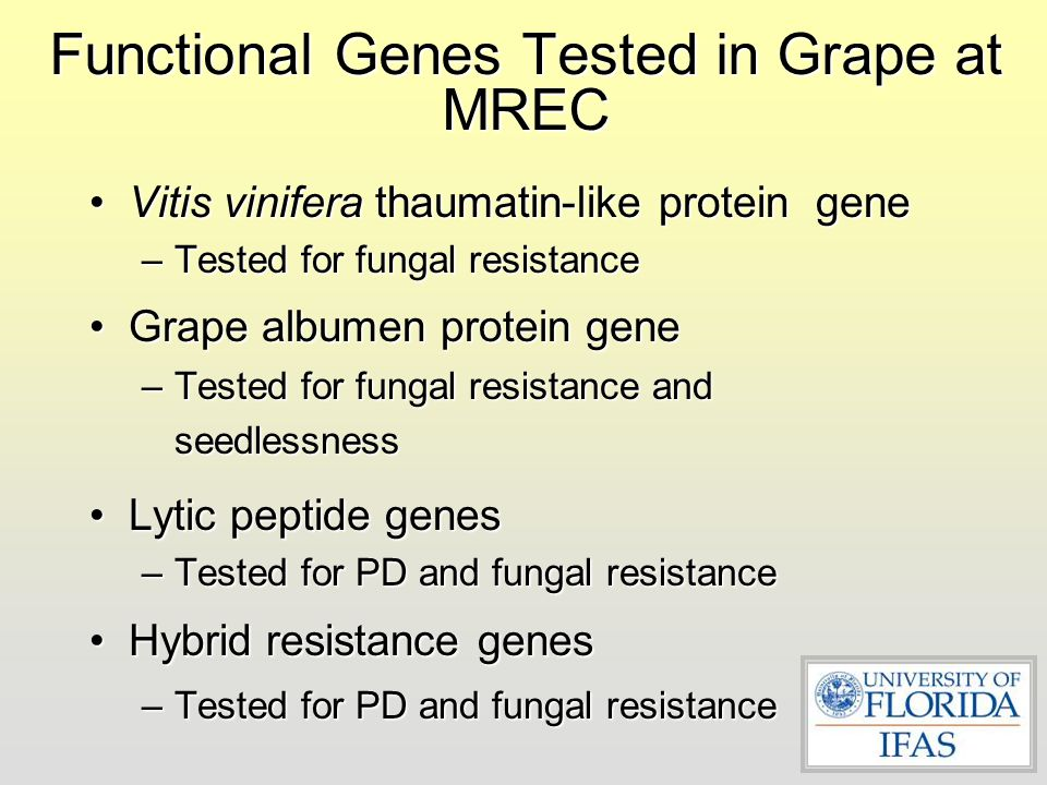 Functional Genes Tested in Grape at MREC