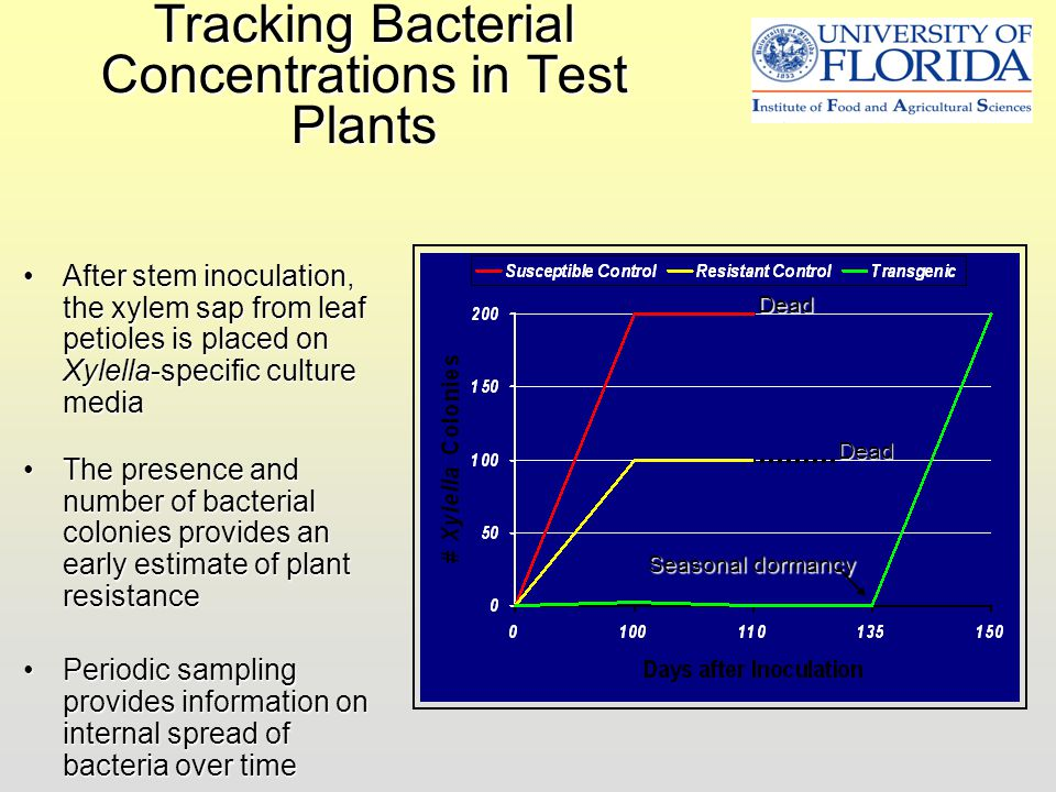 Tracking Bacterial Concentrations in Test Plants