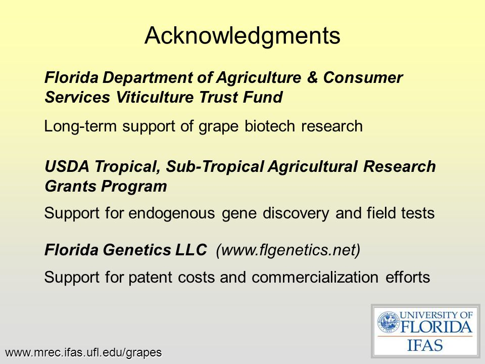 Acknowledgments Florida Department of Agriculture & Consumer Services Viticulture Trust Fund. Long-term support of grape biotech research.